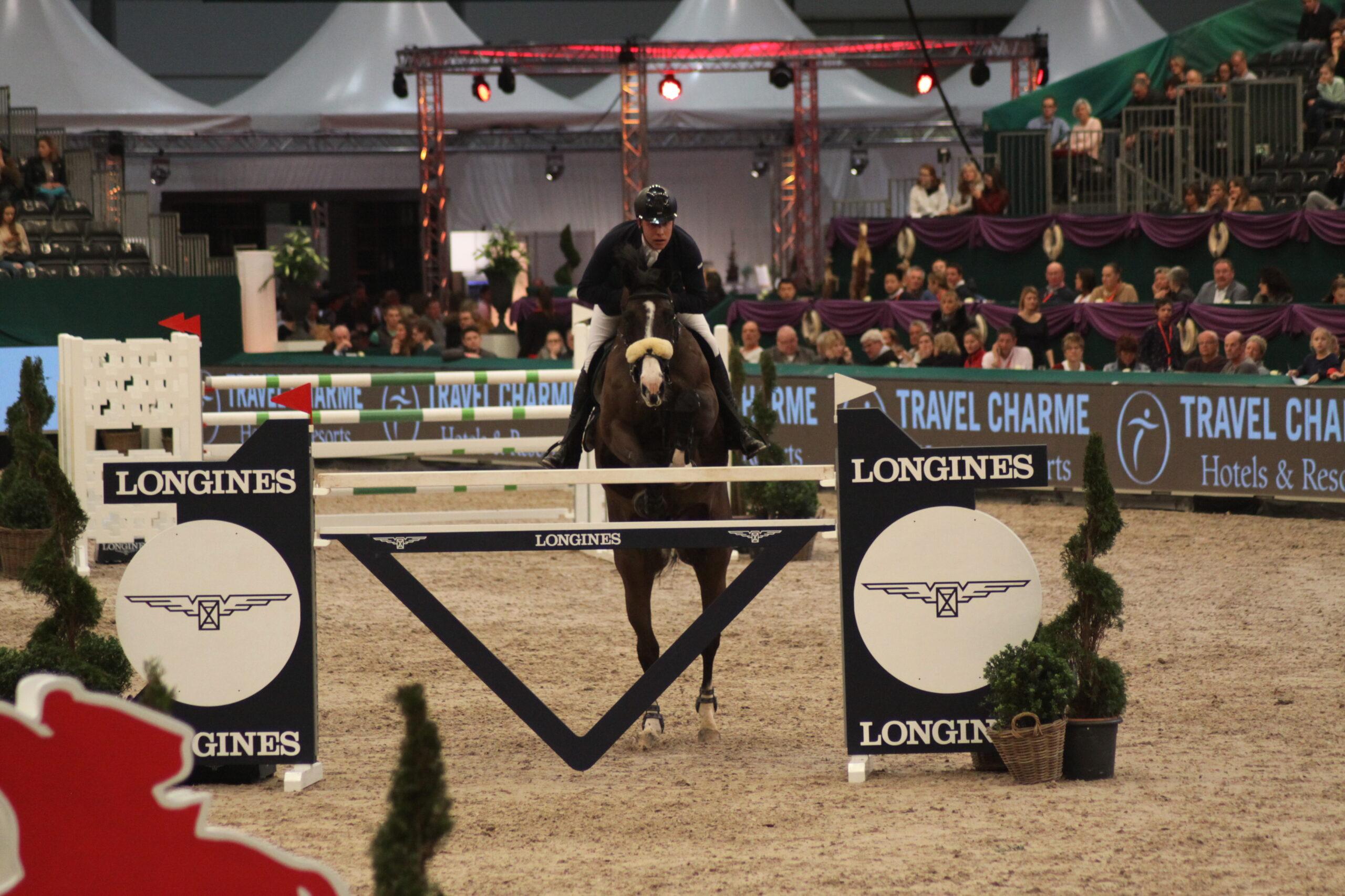 Pferdesport – Springreiten: Ein Reiter auf einem braunen Pferd. Die Vorderhufen des Pferdes befinden sich bereits in der Luft und überqueren ein Hindernis, das von grünen Sträuchern umgeben ist, Foto: Kati Lomb.